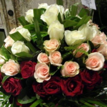 Roses of Destiny
