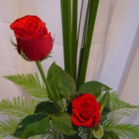 twice as nice two coloured roses in a vase