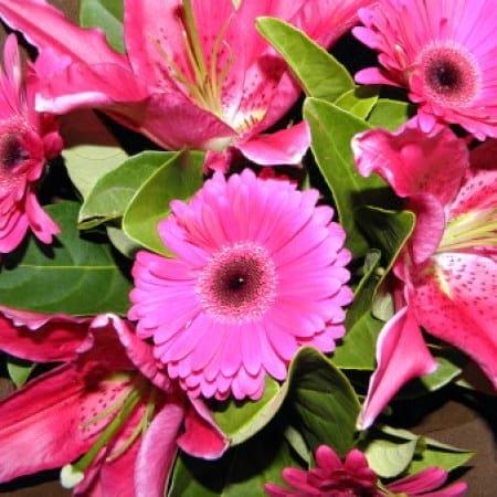 Hot Pink Flower Bouquet | Oriental Lily & Gerbera