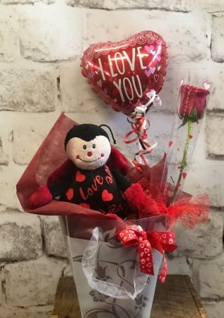 Love Gift Pack Teddy Bear Rose Delivered Newcastle