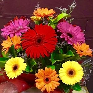 Gerbera Fun Arrangement