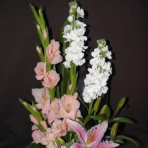 Pink Sensation Arrangement