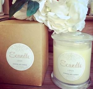 Scandle Soy Candle- Fragrance will vary