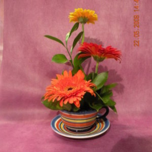 Gerbera Tea Cup Arrangement