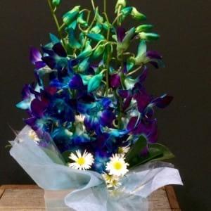 Blue Singapore Bouquet