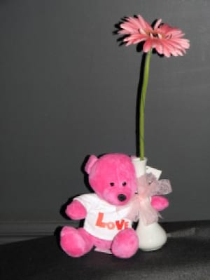 Baby Bear & Flowers Pink